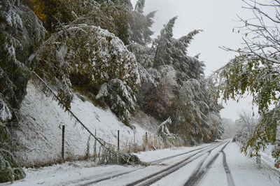 台風26号の影響で季節外れの大雪! - 訓子府町ホームページ